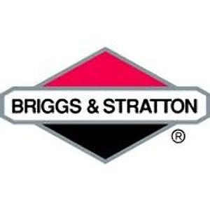Briggs & Stratton Filters
