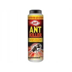 Ant Treatment