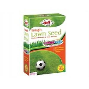 Grass & Plant Seeds